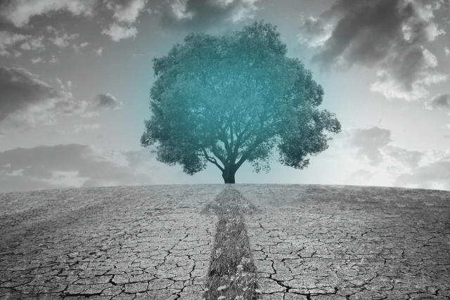 Can technology be the solution to the triple environmental crisis?